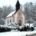Wanderung: Ökologischer Winterspaziergang
